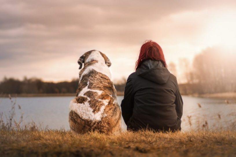 Milieubewust je huisdieren verzorgen